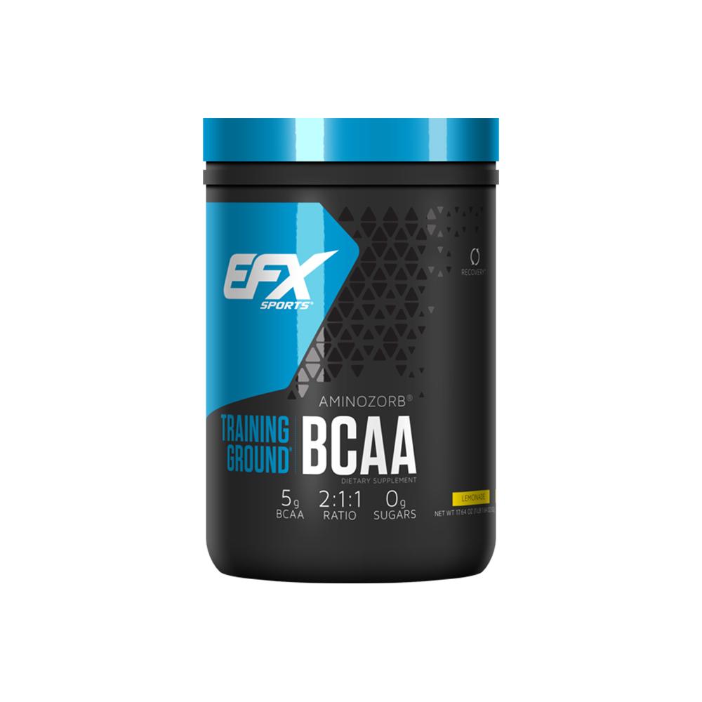 EFX 트레이닝 그라운드 BCAA 500g