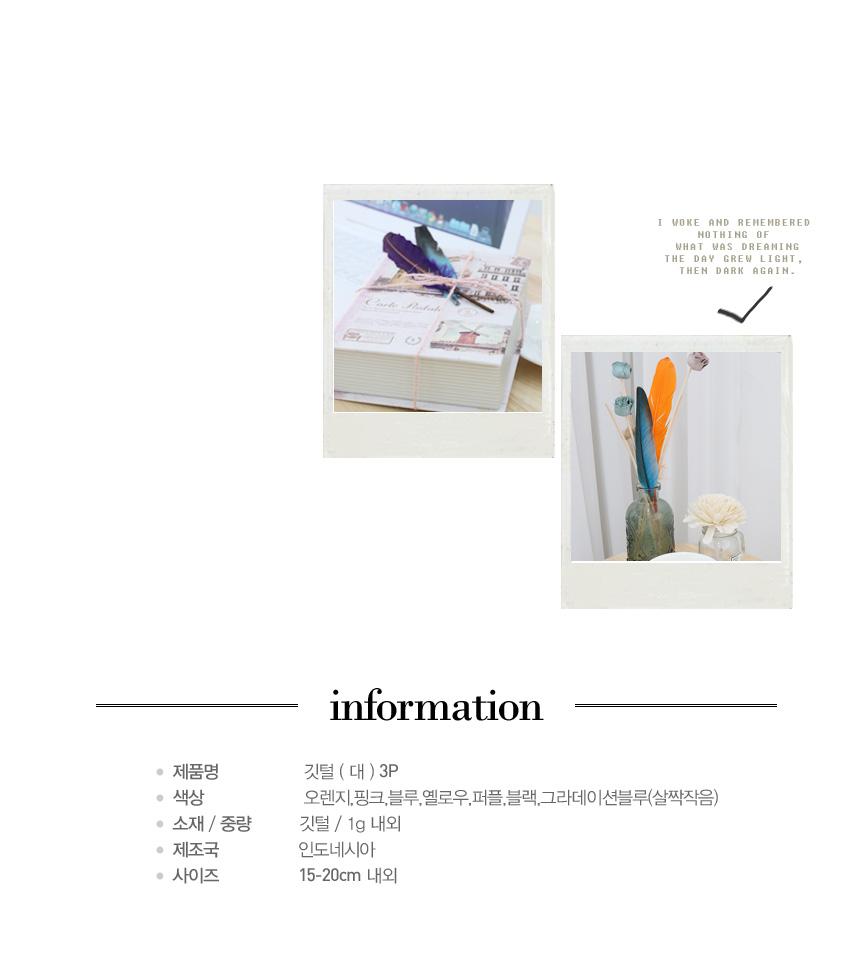 포장데코 깃털(대)3P - 그로브, 2,800원, 스티커, 리폼/DIY스티커