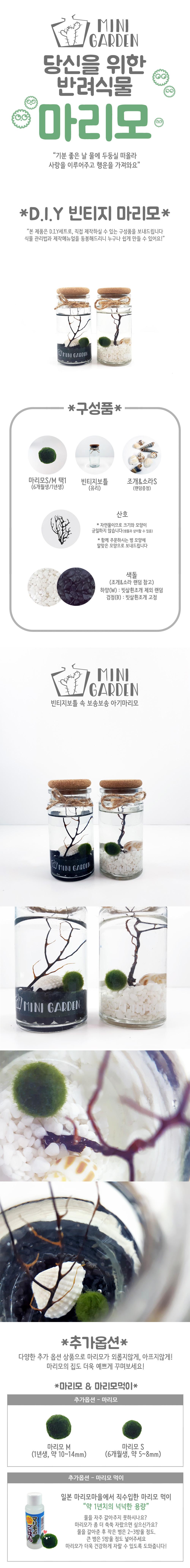 빈티지 화이트-블랙 마리모 DIY 세트 - 미니가든, 13,500원, 키우기, 식물