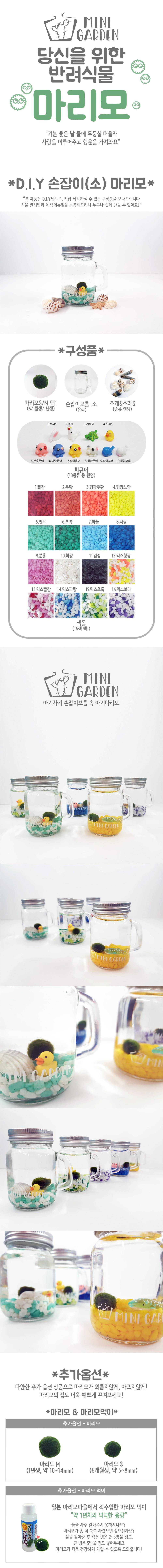 손잡이(소) 마리모 DIY 세트 - 미니가든, 9,900원, 키우기, 식물