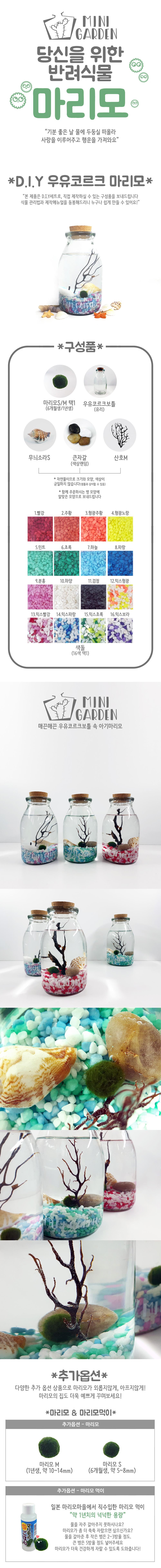 우유코르크 마리모 DIY 세트 - 미니가든, 16,000원, 키우기, 식물