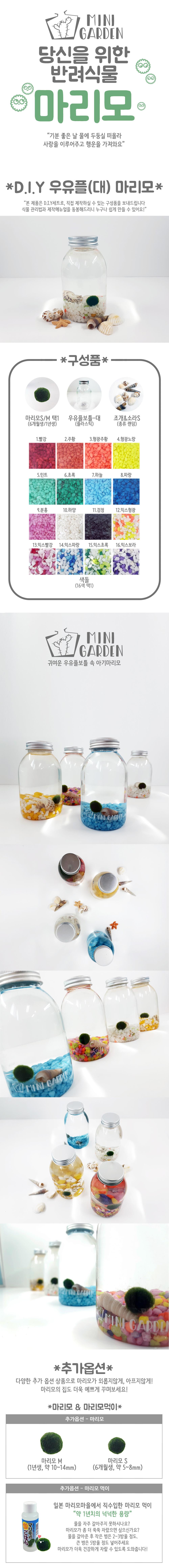 우유플(대) 마리모 DIY 세트 - 미니가든, 8,900원, 키우기, 식물