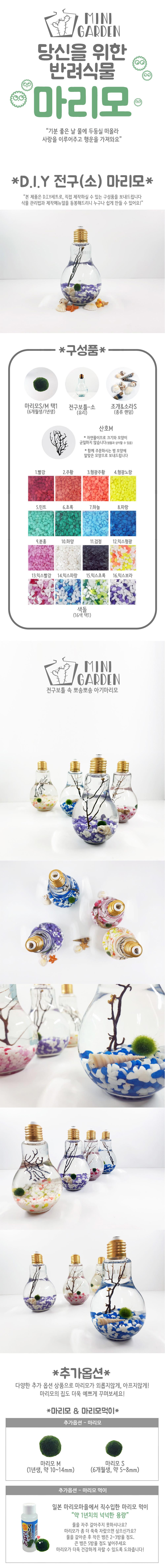 전구(소) 마리모 DIY 세트 - 미니가든, 15,000원, 키우기, 식물