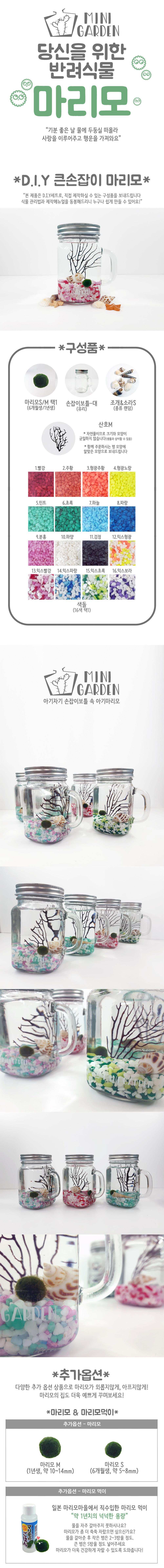 큰손잡이 마리모 DIY 세트 - 미니가든, 14,900원, 키우기, 식물