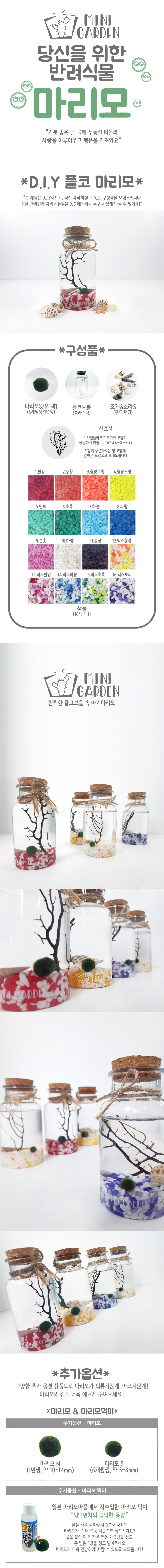 플코 마리모 DIY 세트 - 미니가든, 13,000원, 키우기, 식물