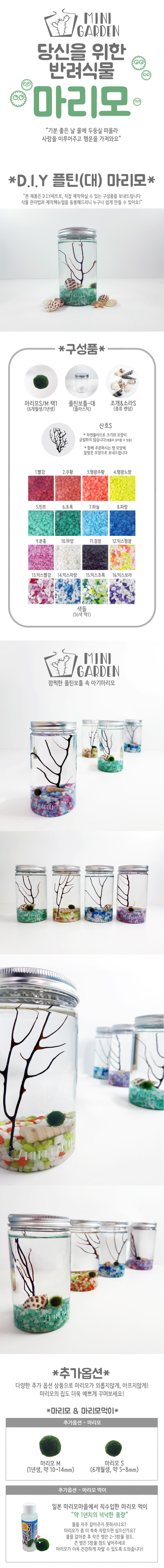 플틴(대) 마리모 DIY 세트 - 미니가든, 12,000원, 키우기, 식물