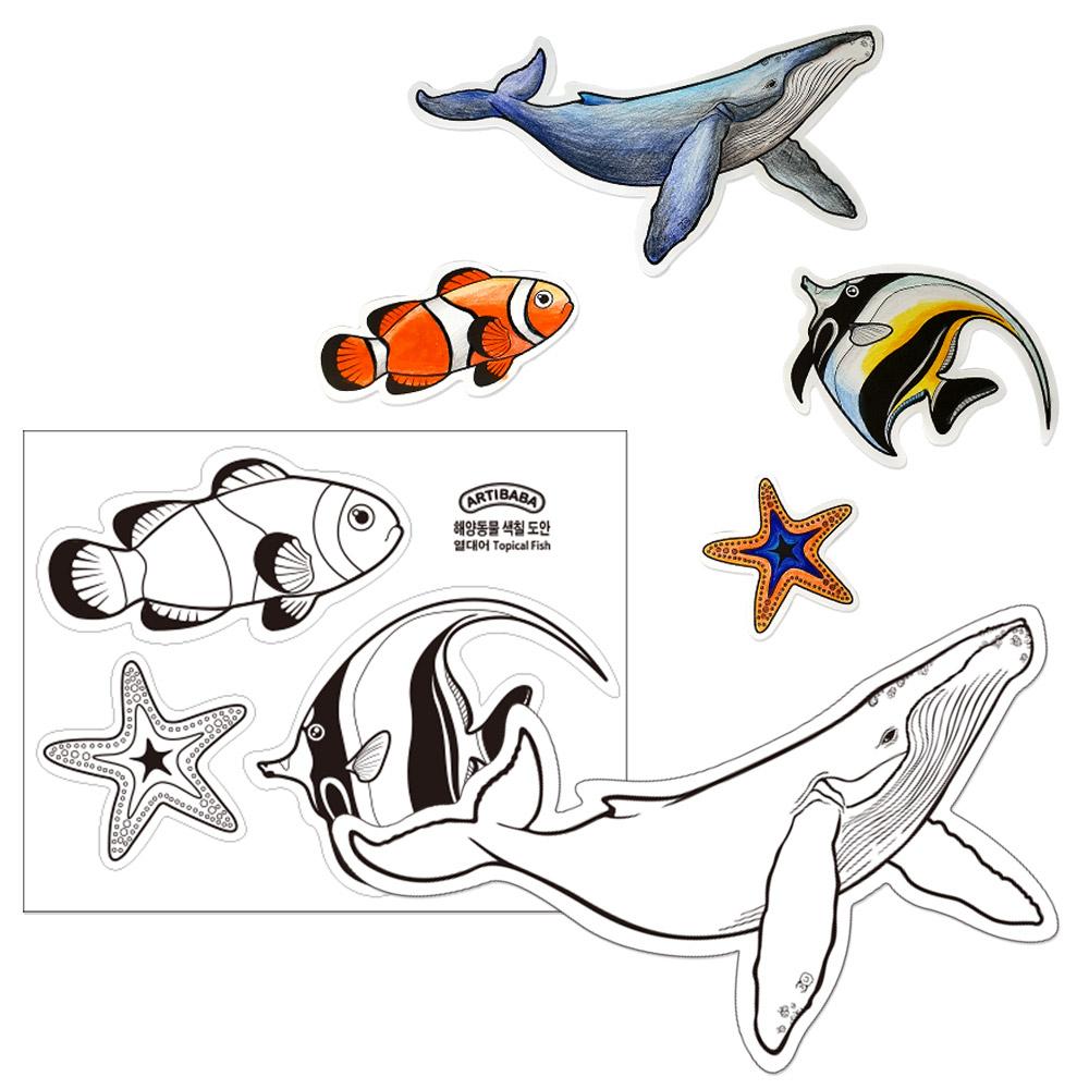 [아티바바] 열대어와 고래 색칠보드/색칠 공부 칼라링북