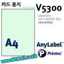 프린텍 카드용지 V5300 (A4) 무광 백녹색 -