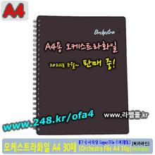 슈퍼화일 A4 30p (Super File 30p/A4) - 오케스트라화일30 (Orchestra File 30p/A4)