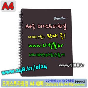 슈퍼화일 A4 40p (Super File 40p/A4) - 오케스트라화일40 (Orchestra File 40p/A4)