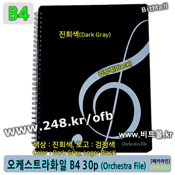오케스트라화일 30 B4 - 수퍼화일30 B4 (Super File 30p/B4) 슈퍼화일B4 - OrchestraFile