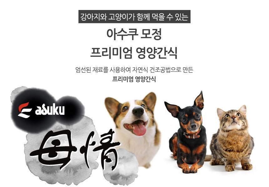 씨더파쉬 - 소개