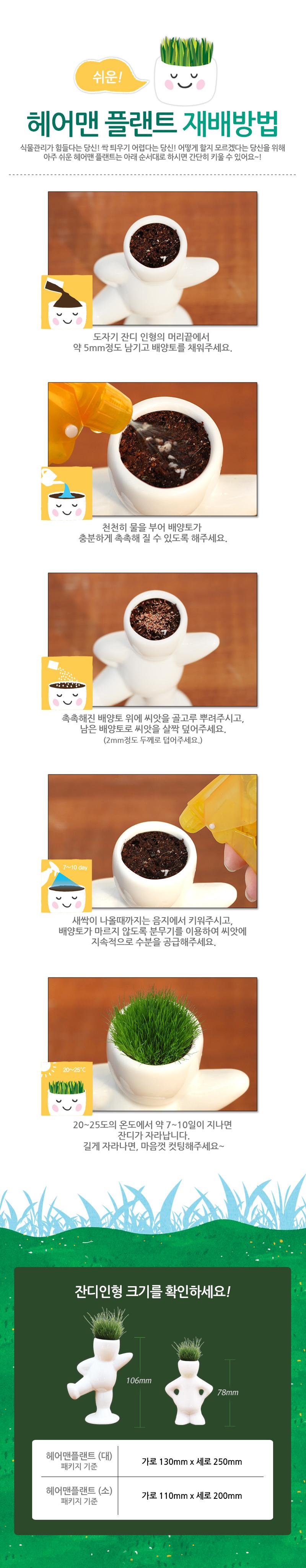 잔디인형 헤어맨플랜트(소)_당당이 - 꿈쟁이플라워캔, 3,000원, 새싹/모종키우기, 새싹 키우기