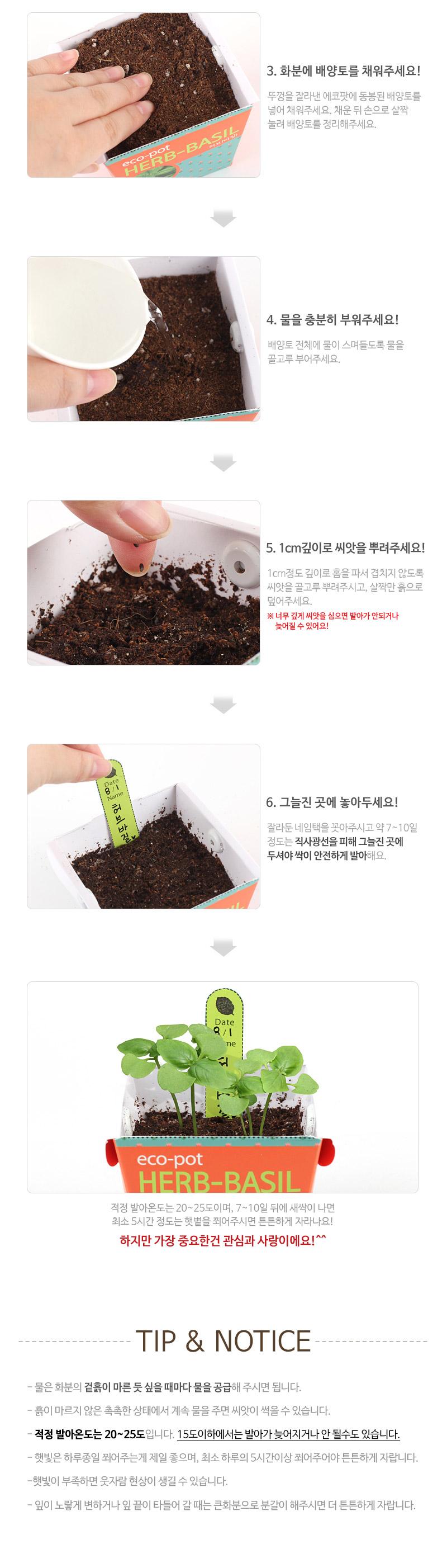 에코팟-방울토마토 - 꿈쟁이플라워캔, 3,000원, 새싹/모종키우기, 새싹 키우기
