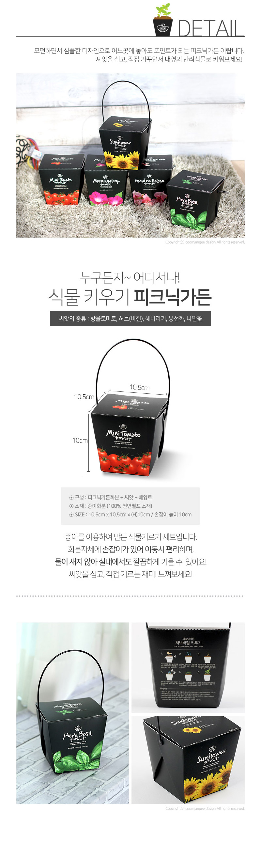피크닉 가든 - 자연친화적 종이화분 - 꿈쟁이플라워캔, 4,000원, 공화분, 미니화분