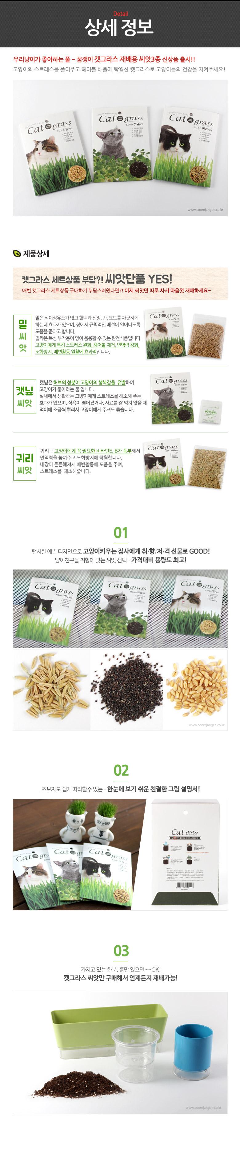 캣그라스 씨앗2,000원-꿈쟁이플라워캔펫샵, 고양이용품, 간식/캣닢, 캣닢바보사랑캣그라스 씨앗2,000원-꿈쟁이플라워캔펫샵, 고양이용품, 간식/캣닢, 캣닢바보사랑