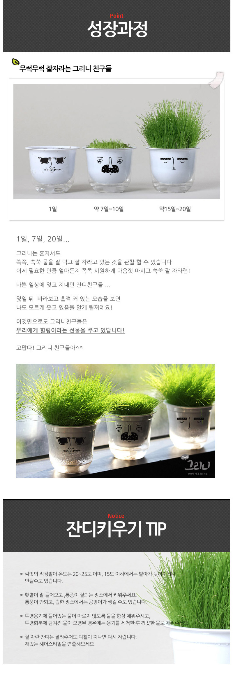 greenie_05.jpg