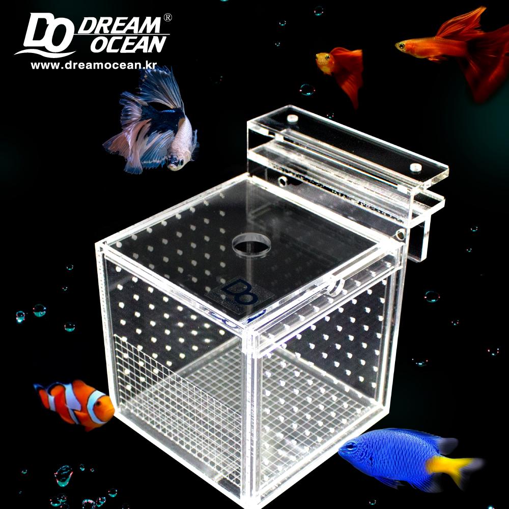 Do Fish Box 피쉬박스 S (12x12x12cm)