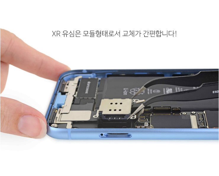 XR-2.jpg