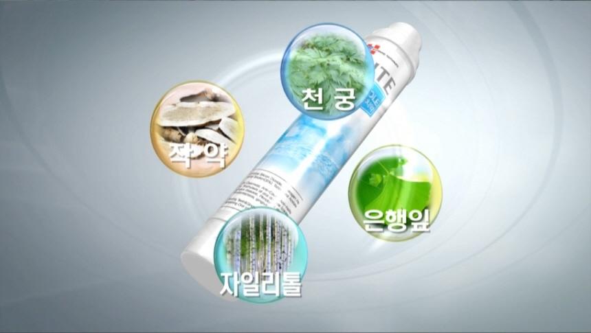 치아미백 화이트닝 투스홀 미백치약 3개+은칫솔 3개 - 노블다움, 37,900원, 양치, 치약/디스펜서