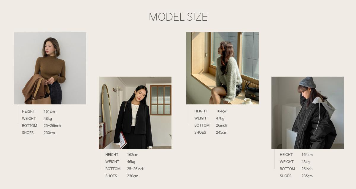 model_sh.jpg