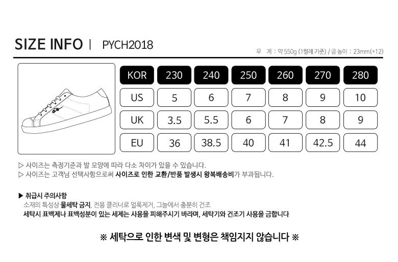 pych2018_size.jpg