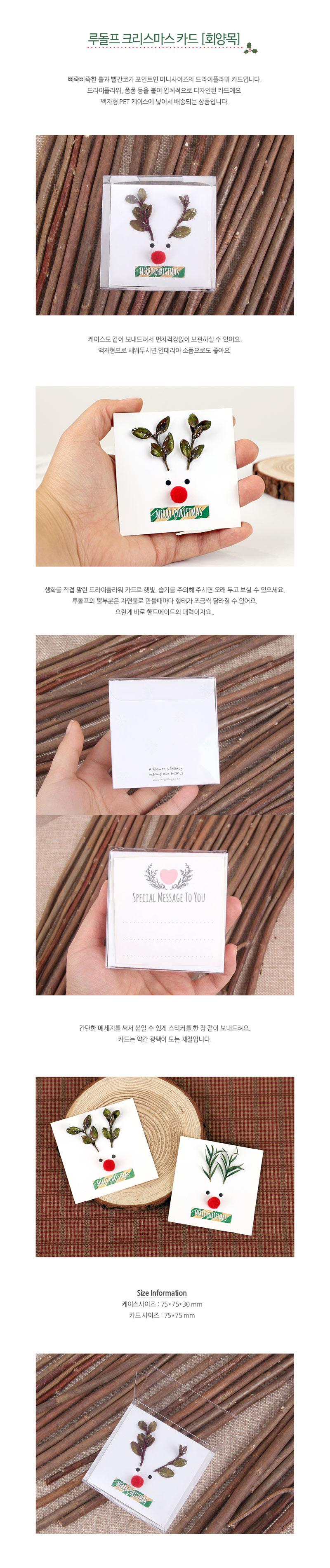 루돌프 크리스마스 카드-회양목 - 미스타이니, 4,500원, 카드, 크리스마스 카드