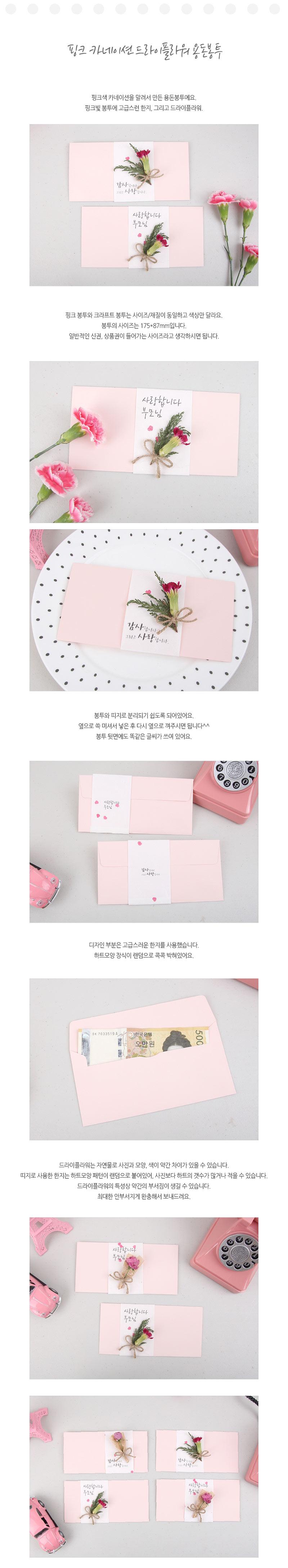핑크 카네이션 드라이플라워 용돈봉투 - 미스타이니, 5,000원, 용돈봉투, 기타 용돈봉투