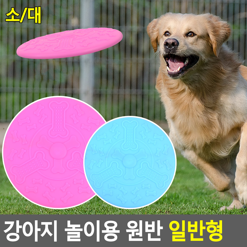 강아지 놀이용 원반 일반형 애견토이 강아지토이 애견용품 애견장난감 강아지장난감 애견원반장난감 원반