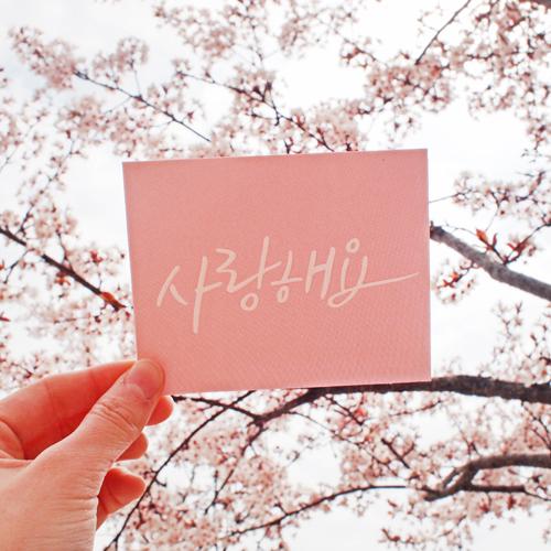 500 손글씨미니메세지카드