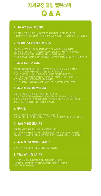 바른자세 정품 웰빙 밸런스백 고급형 - 일진팩토리, 49,800원, 안마/교정, 교정기구