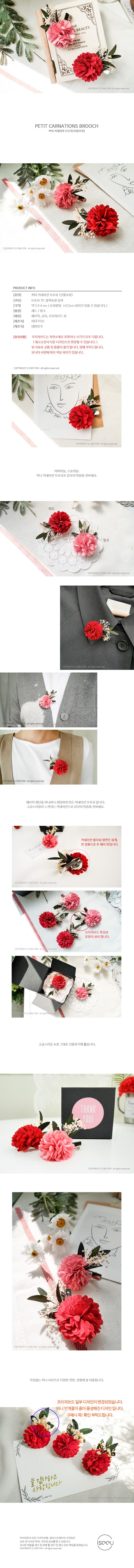 쁘띠 카네이션 브로치 - 아이씨유, 10,000원, 조화, 카네이션(조화)