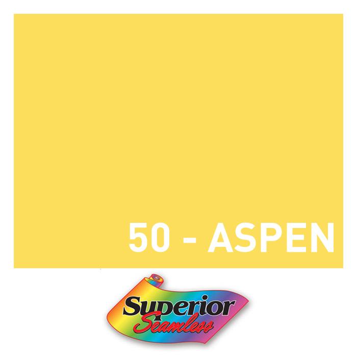50 – Aspen 배경지