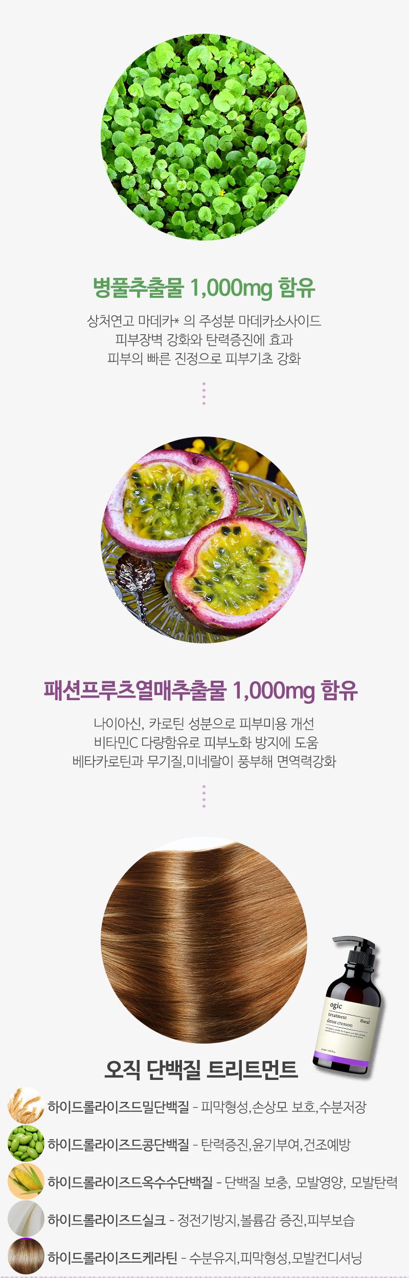 오직 댄스크레숑 비듬 탈모샴푸+트리트먼트 500ml - 오직, 18,800원, 헤어케어, 샴푸/린스
