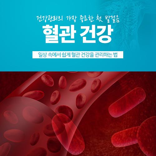 혈관 건강