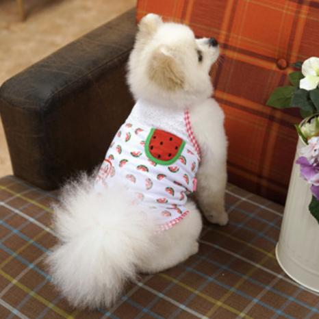 소형견 강아지 애견 레드색 수박 패턴 끈 나시 M 레이스 여름 면 옷 티셔츠 민소매