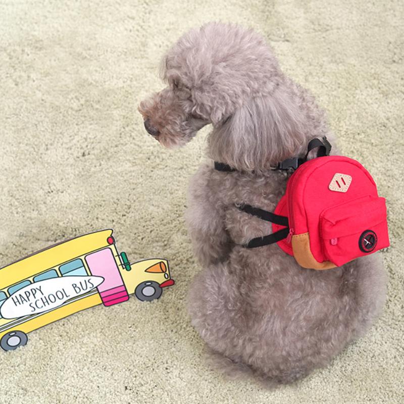 강아지 유치원 학교 빨강 가방 백팩 하네스 가슴줄 리드줄 세트