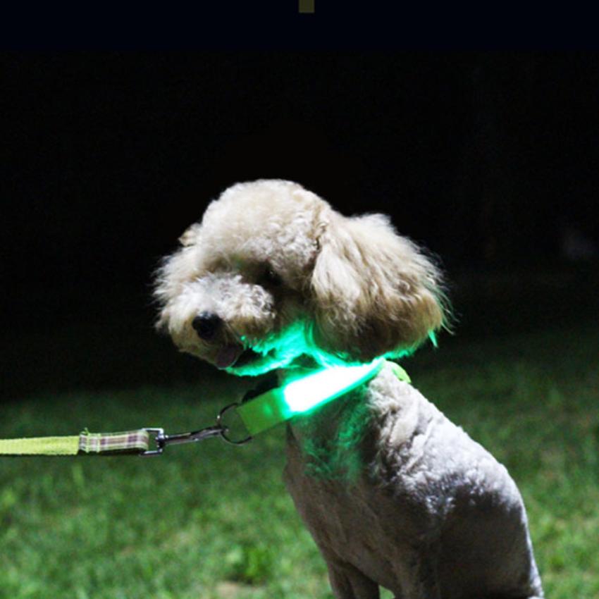 강아지 애견 야간 산책 외출 LED 버클 발광 목줄 야광 리드줄 위험예방 L사이즈