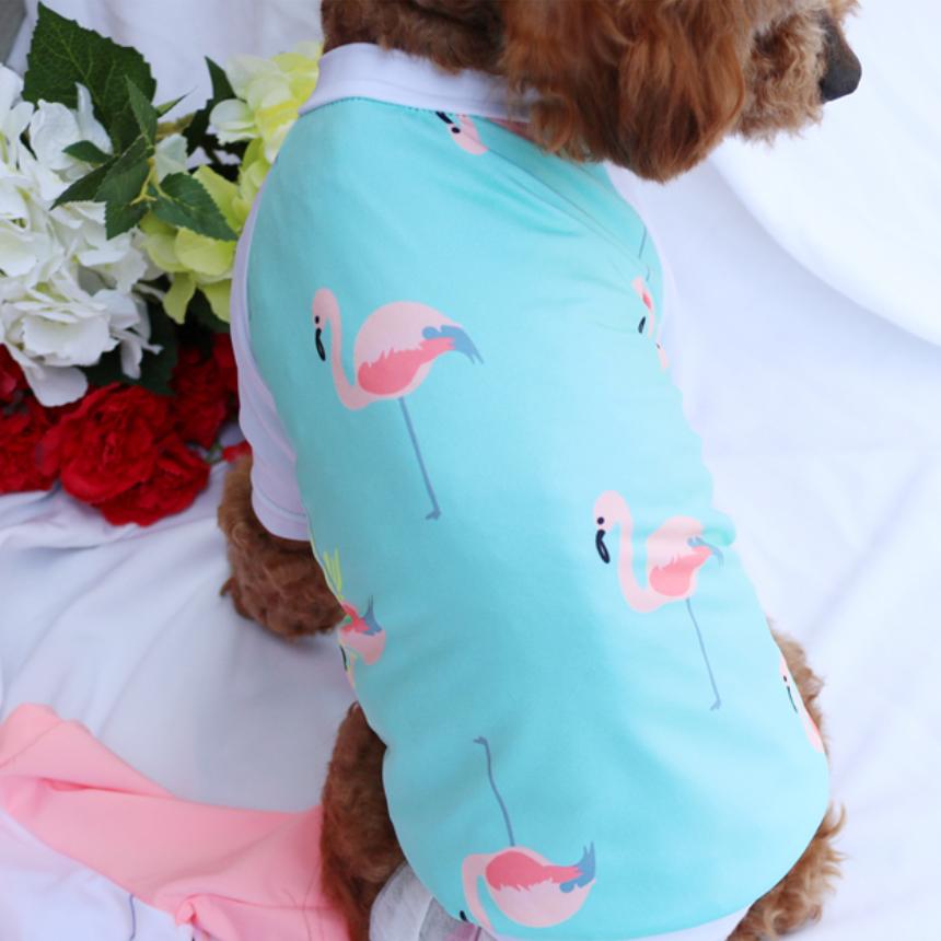 강아지 여름 수영복 민트색 래쉬가드 애견 옷 반팔 티셔츠 패션 소형 중형 대형 티