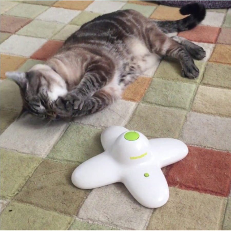 고양이 자동 움직이는 나비 흥미유발 장난감 캣 움직임 랜덤 토이