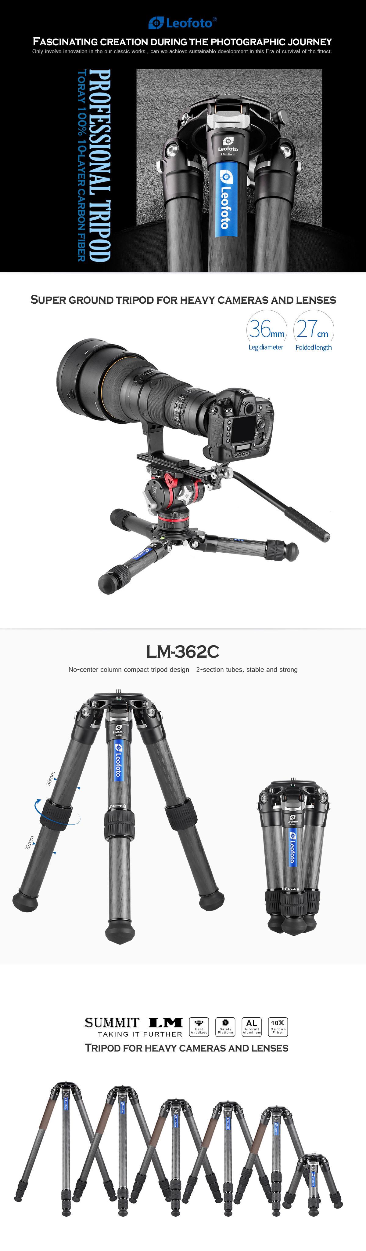 LM_362C_01.jpg