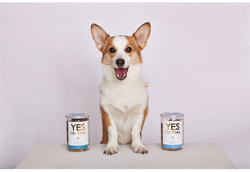 예스아임리얼-양고기트릿 강아지간식 관절건강 - 골드로니, 17,600원, 간식/영양제, 수제간식