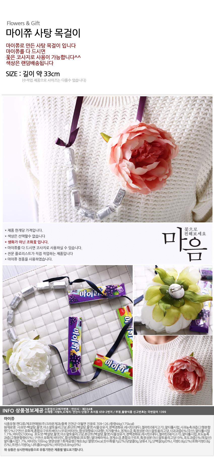 마이쮸 사탕 목걸이 - 알사탕닷컴, 6,800원, 초콜릿/사탕, 사탕