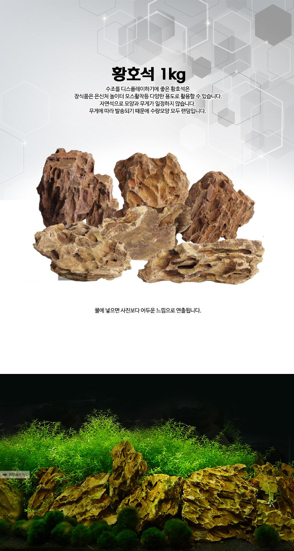 어항꾸미기 - 황호석 1kg 전후 (모양랜덤) - 미미네아쿠아, 3,000원, 장식품, 바닥재