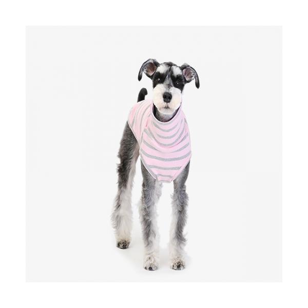 굿스트라이프 터틀넥 핑크 애견의류 강아지옷
