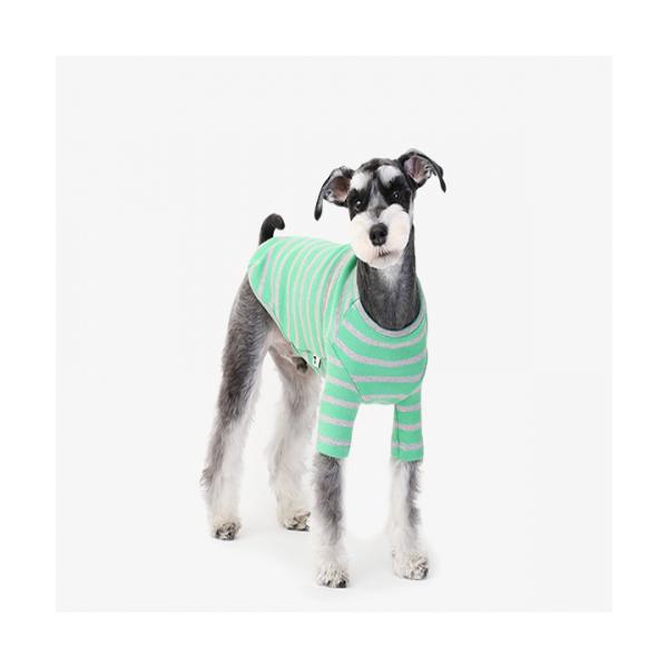 굿스트라이프 그린 애견의류 강아지옷