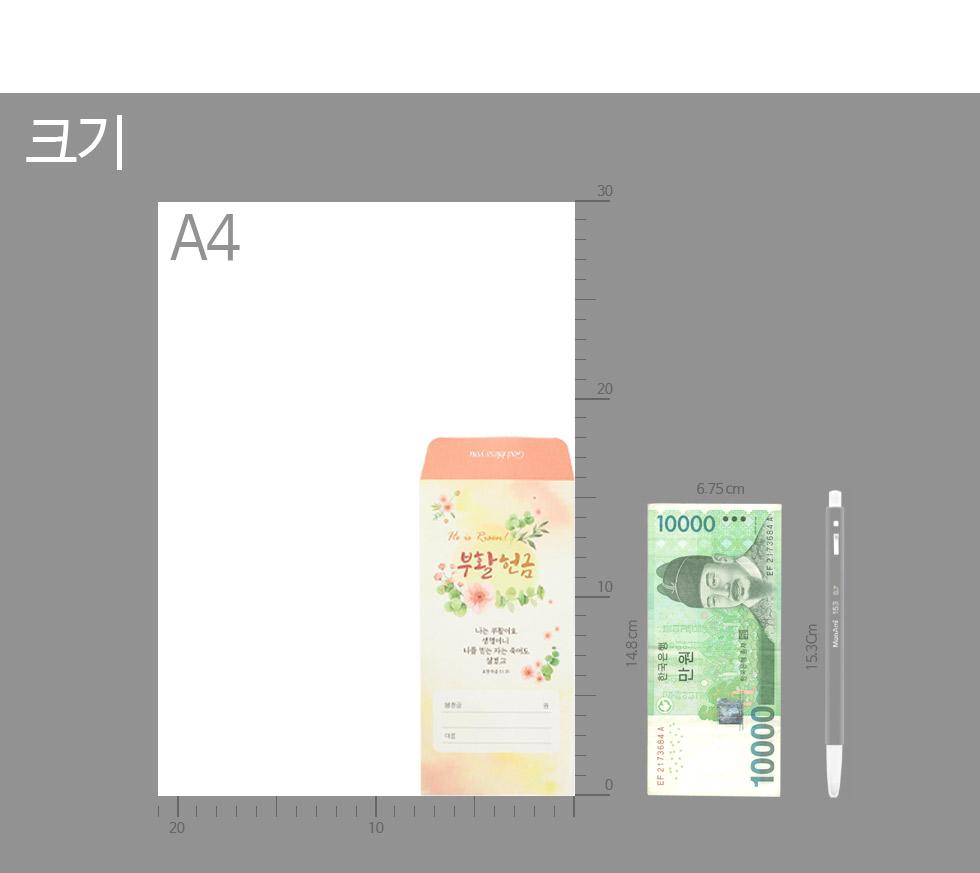 부활절 헌금봉투 지폐와의 크기비교
