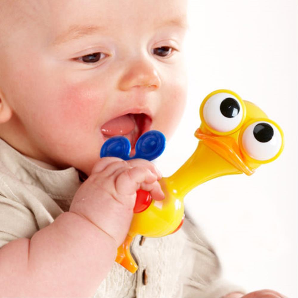 놀잇감 타조 동물 모형 2세아기 장난감 생일선물 초등교육 어린이교육