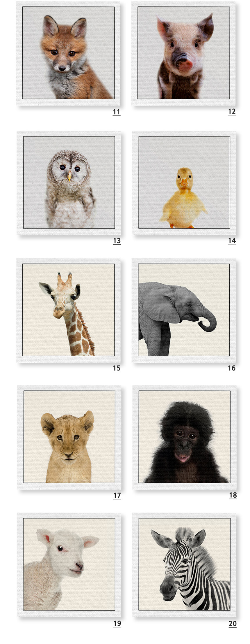 바인 아기동물 인테리어액자 35x35 20종 - 샤이닝홈, 23,900원, 액자, 벽걸이액자