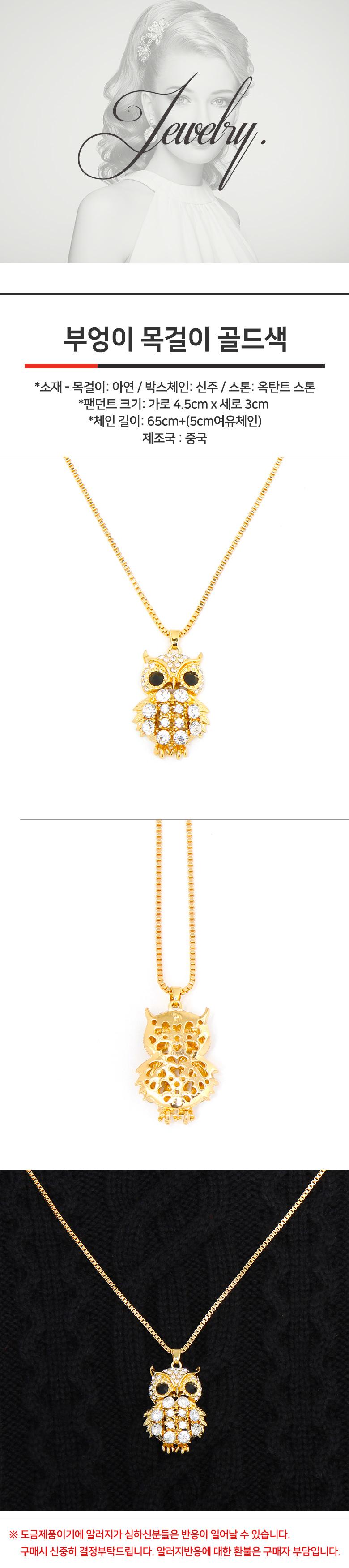 복을 물고오는 부엉이 목걸이 골드 - 샤이니아이돌, 14,000원, 패션, 패션목걸이